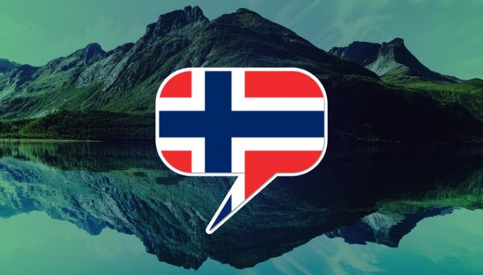 Norveççe Yeminli Tercüme
